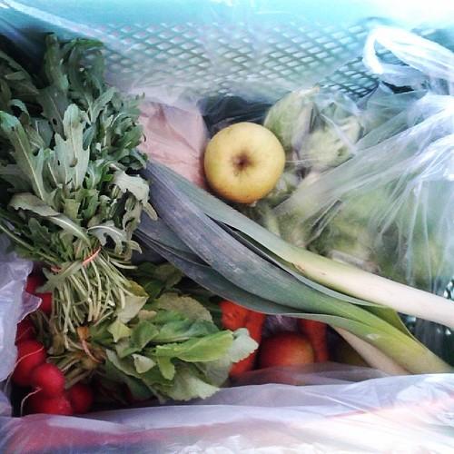Gemüsekiste annehmen #12v12