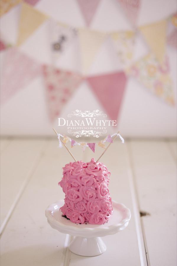 P cake smash 2013 001