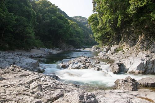 nikon 日本 愛知県 d610 新城市