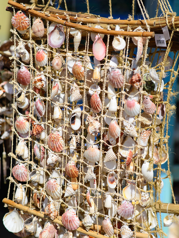 Sea shell ornament in Porto Venere