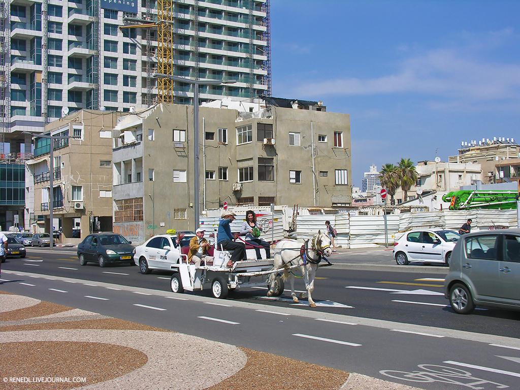 Tel-Aviv Renedl 11