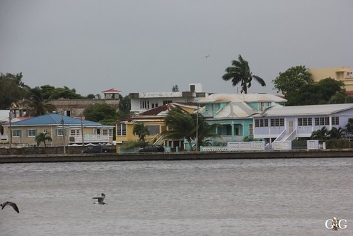 Kreuzfahrt Miami-Cozumel-Belize-Roatan-Cayman Isle 94