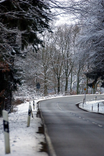 Winter street through the forest 1
