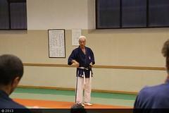 SEMINARIO HIROO MOCHIZUKI - VERONA 2013