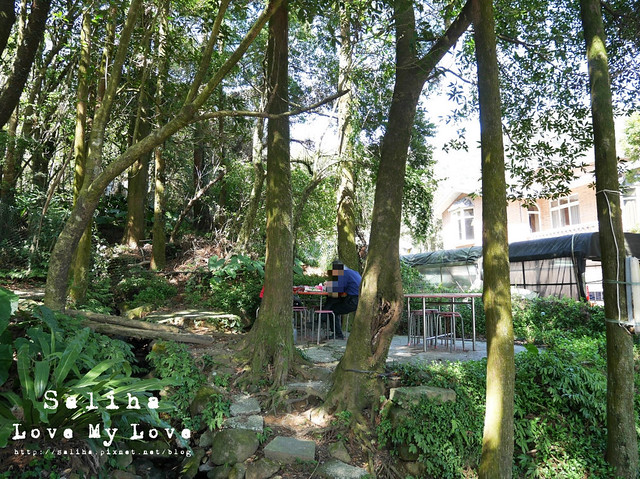 陽明山竹子湖餐廳山園 (29)