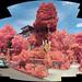 IR-G-B panorama by mathew.lippincott