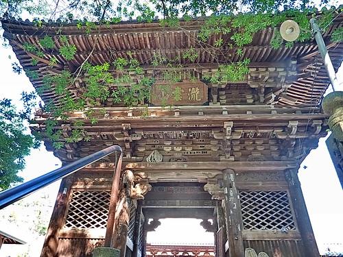 【写真】四国八十八ヶ所 : 第52番札所・太山寺