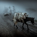 The way to the Dorze tribes, Ethiopia by Harry Fisch Nomad Expediciones Fotograficas