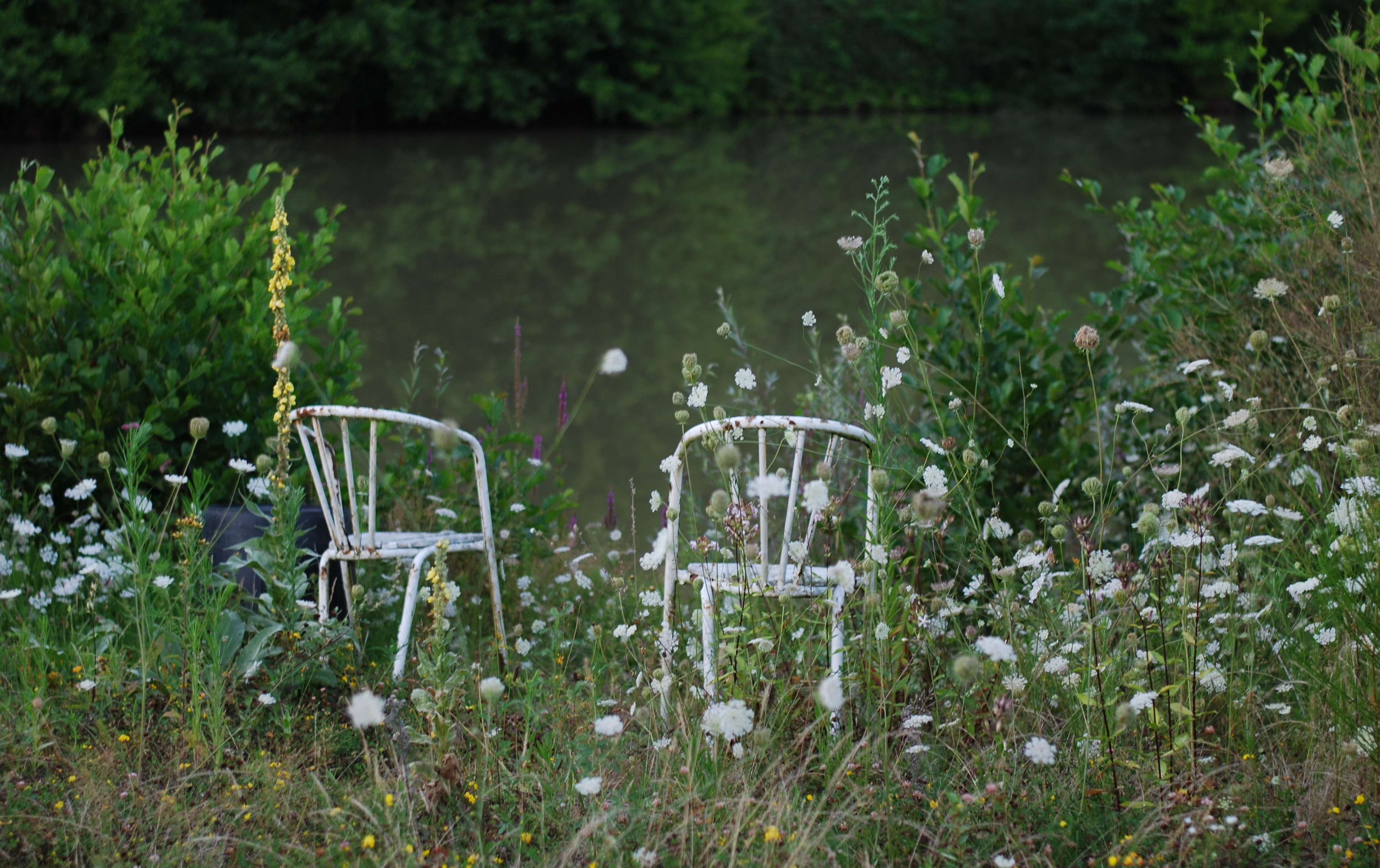 chambray and curls chairs in flowers by a lake