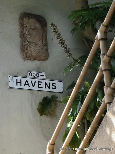 Havens__sigh
