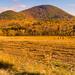 Mohawk Trail by dennisforgione