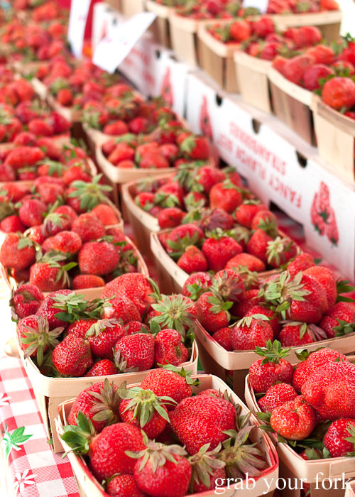 Fresh strawberries Logan Square Farmers Market greenmarket producers fruit Chicago Illinois