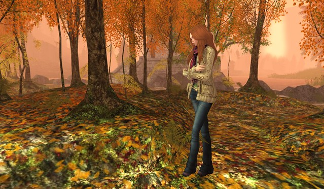 Autumn Chill 2 | Flickr - Photo Sharing!