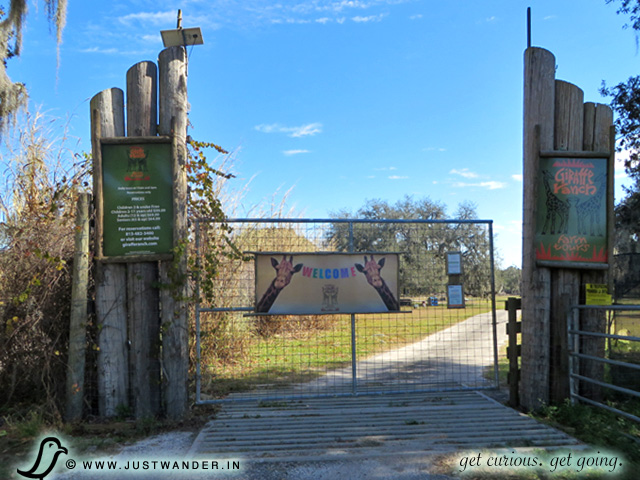PIC: Gate Entrance to Giraffe Ranch