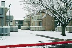 My Apartment Complex, Valentine's Day Snow