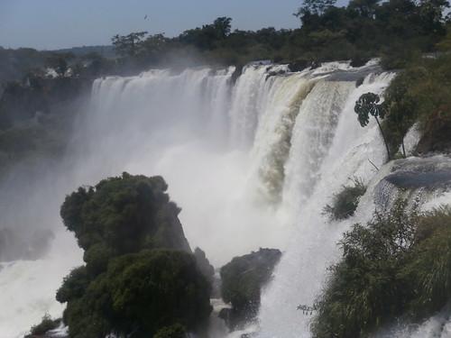argentina marisol 2014 arvinder arvinderbawa