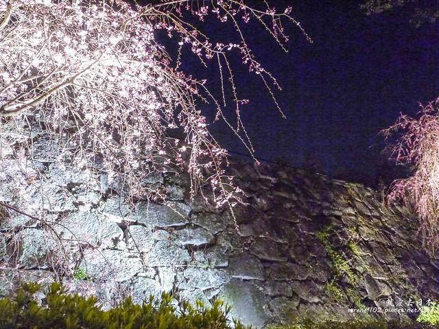 20140327山陽D2熊本-1130364