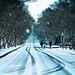 Running through the Snow by Sky Noir