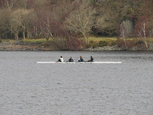 391 Coxless four on Lln Padarn