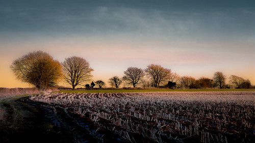 winter light england cold color nature beautiful canon landscape vibrant gloucestershire 6d ericgoncalves