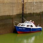 Missi Pippi waiting the tide!