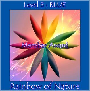 RoN_5Blue_Member