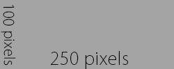 250x100