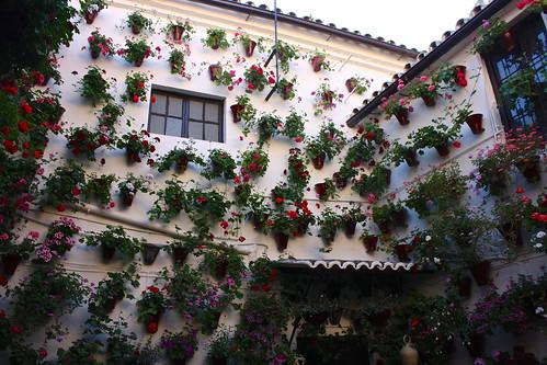 Springtime in Andalucía, Spain