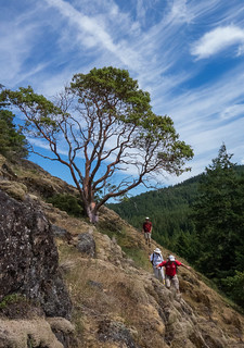 On the Ramparts - Sooke Mountain Provincial Park