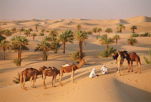 اجمل صحراء في العالم  9604282828_bd8c7b0ca9_o