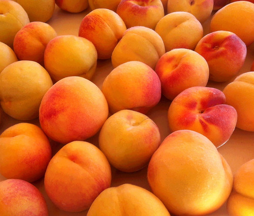 Eastern Peaches (Posterized) by randubnick