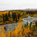 Small photo of Trail Creek Trail- Fall Meets Winter