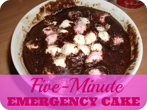 Five-Minute Emergency Cake