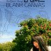 Fri, 11/22/2013 - 18:03 - Official poster for the film 'Blank Canvas'. Directed by Simeon Lumgair. www.quirkymotion.com