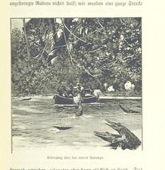 """British Library digitised image from page 163 of """"Durch Kamerun von Süd nach Nord. Reisen und Forschungen im Hinterlande 1889 bis 1891 ... Mit ... Abbildungen ... von R. Hellgrewe, etc"""""""