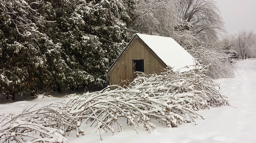 Snowy shed by @klawrenc