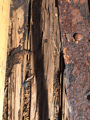 rotten wood deck margin