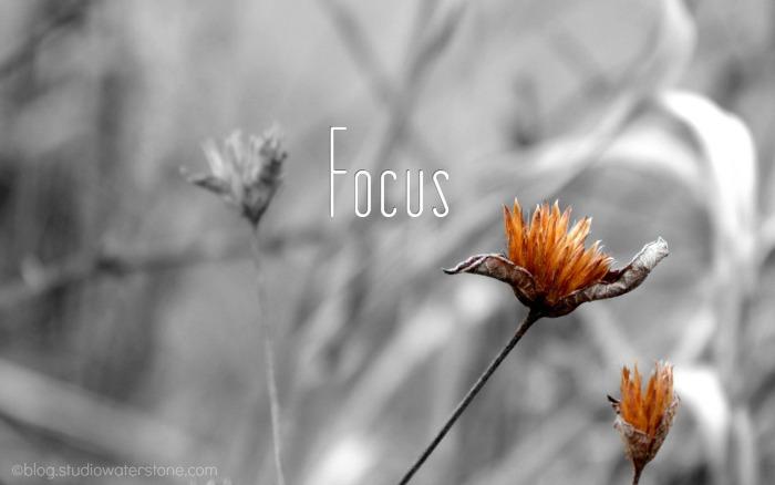 focus-desktop-700