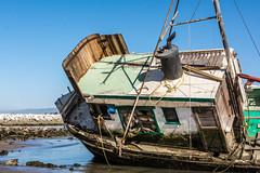 sailboat(0.0), ship(0.0), sea(0.0), caravel(0.0), galleon(0.0), vehicle(1.0), watercraft(1.0), shipwreck(1.0), boat(1.0),