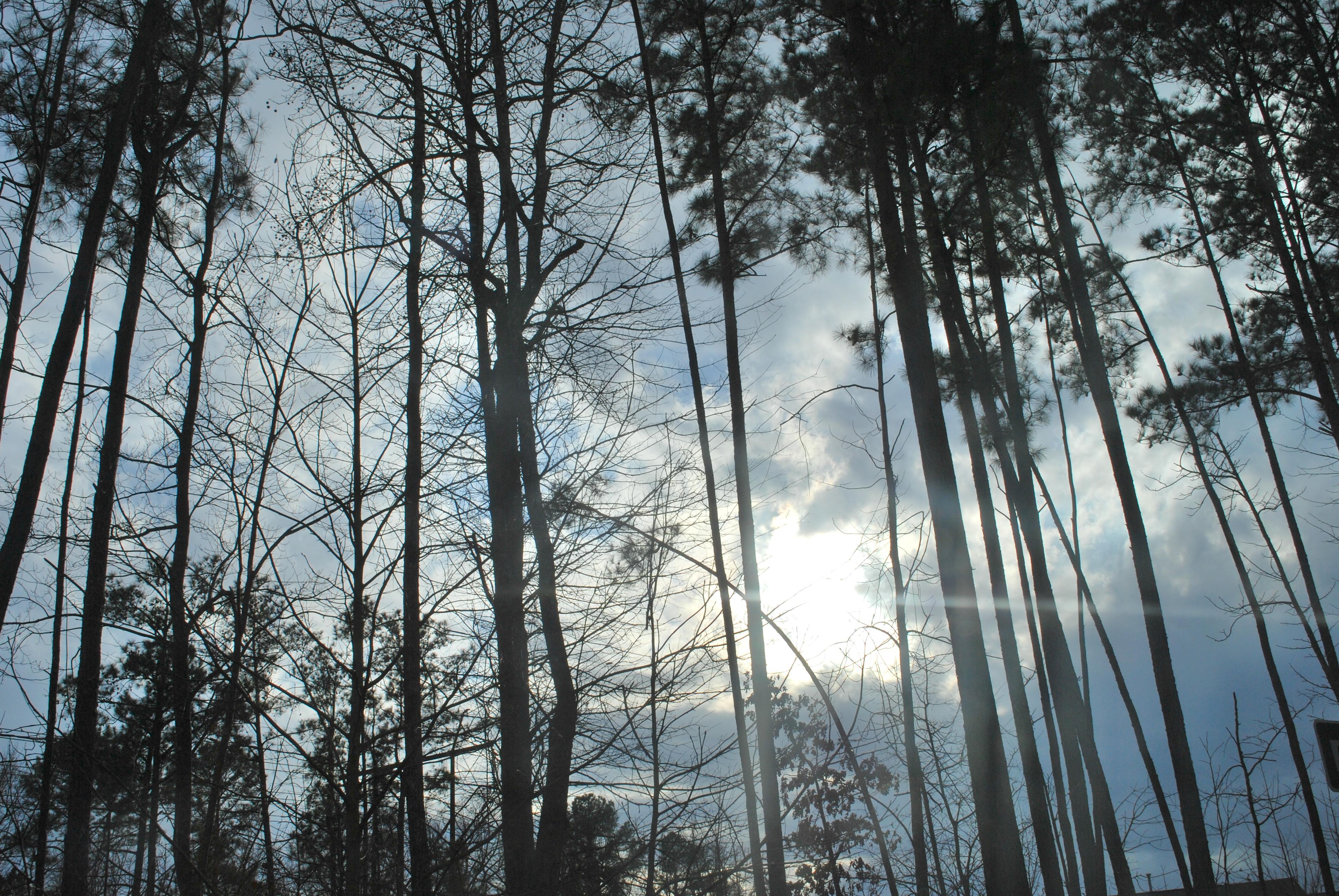 Blog_2014 215