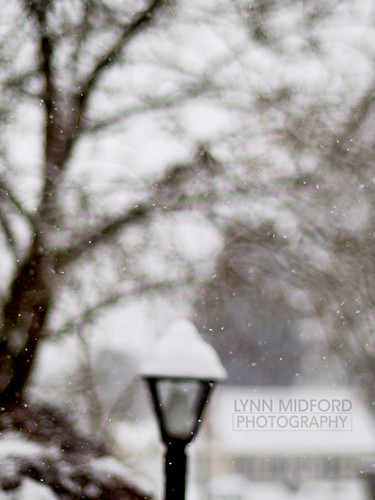 Neighborhood snowy bokeh