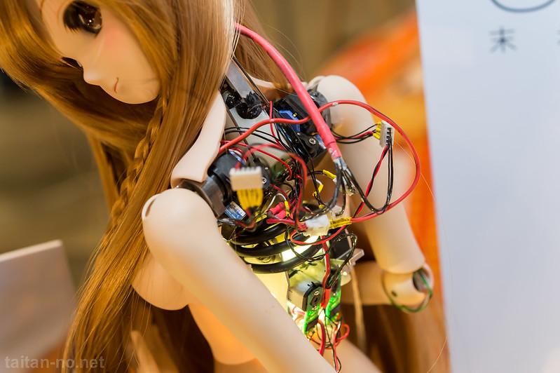 WF2014W-06_CULTURE_JAPAN-DSC_2879