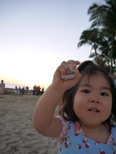 2014.hawaii.ami 253