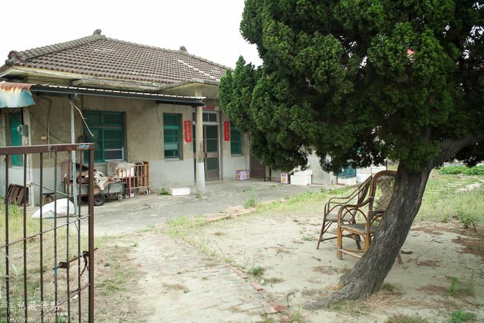 台南私藏景點--學甲寮平和里 X 蜀葵、小麥、羊群、老厝群 (28)