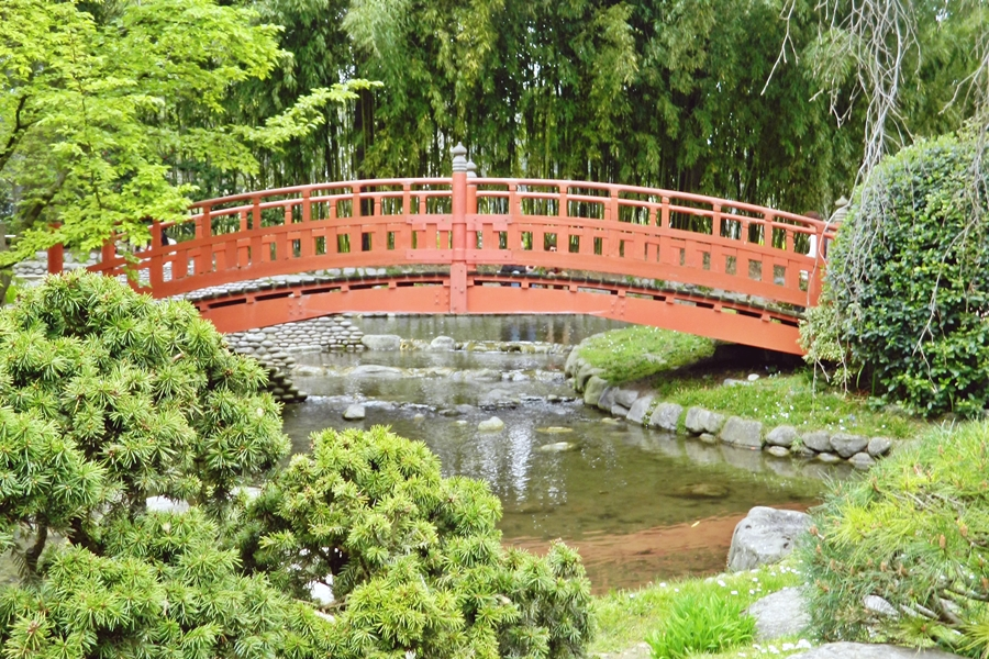 Jardin japonais Albert Kahn (8)