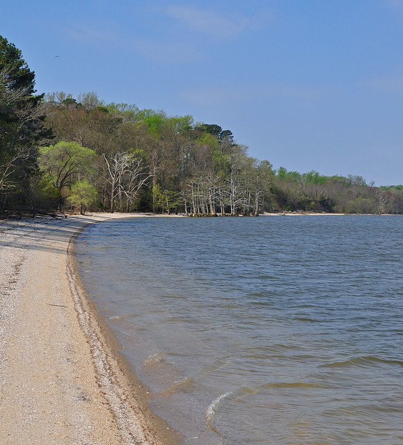 James River Beach (1)