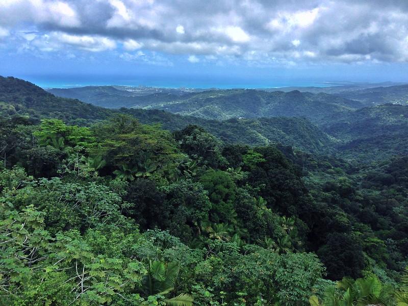 【原创】2014体验加勒比的碧海蓝天 PR&USVI (P1,P4,P7,P8,P9) 更新完毕-52楼