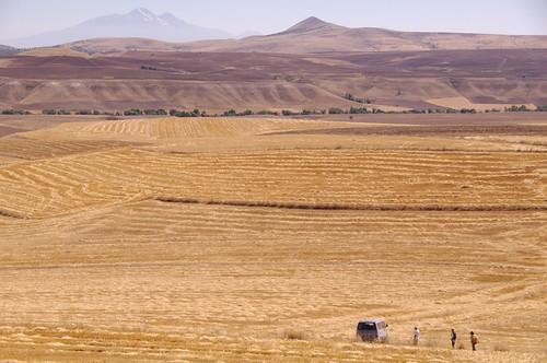 大平原高原