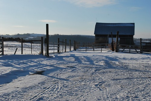 Barnyard in January