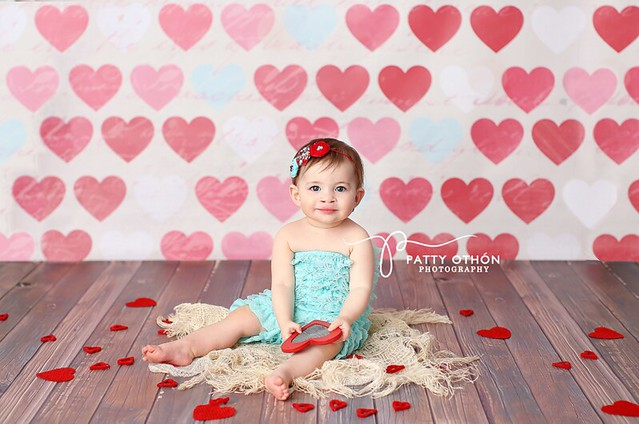 Photography Backdrops for Valentine's Day Vinyl Photo Backgrounds www.hsdbackdrops.com